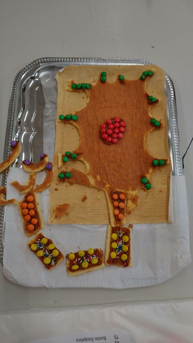 Dsm Elaborando Maquetas Comestibles
